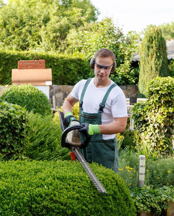 Eldorado Green House